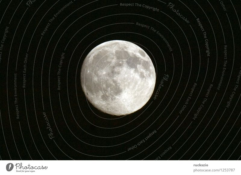 Full moon; Impression; Star; Earth satellite; Moon; Full  moon Dark Moody siluette siluettes Celestial bodies and the universe moon impression moon impressions