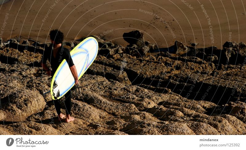 Low tide? Ocean Surfing Surfer Surfboard Brown Coast Aquatics Sand Rock