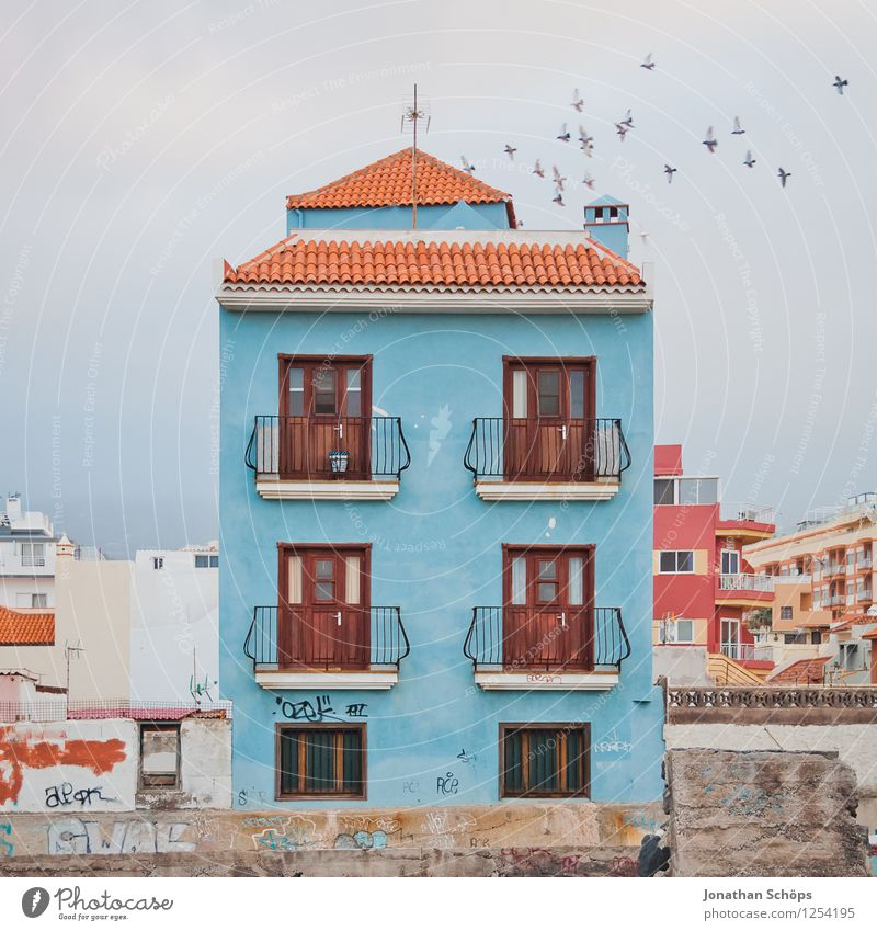 *** 800 *** Puerto de la Cruz / Tenerife XLVI Small Town Downtown Outskirts Old town Populated House (Residential Structure) Detached house Facade Window Roof