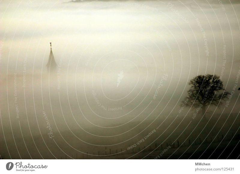 Sky White Tree Dark Autumn Cold Weather Fog Gloomy Tower Bushes Grief Village Hide Dew Mystic