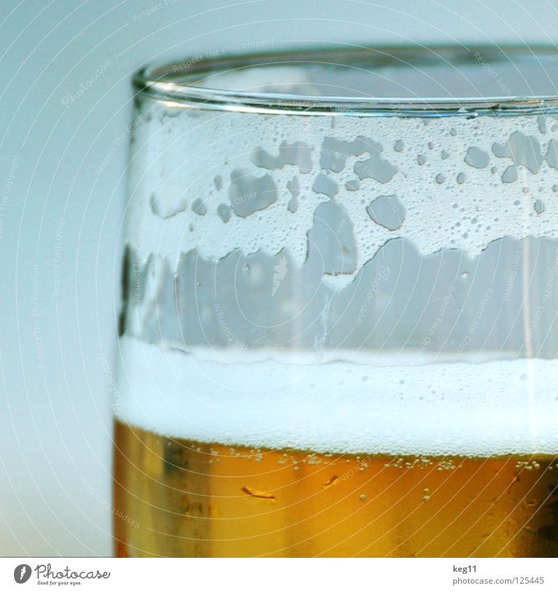 Cheers! A beer for Saturday night! Beer Beer glass Foam Drinking Alcoholic drinks Glass Froth Partially visible Section of image Detail Close-up Thirst-quencher