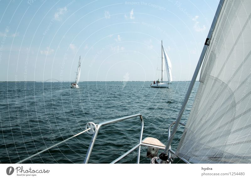 Lazing on a sunny afternoon Relaxation Vacation & Travel Summer vacation Ocean Sailing trip Sailing vacation Yachting Railing Waves Coast Baltic Sea Fjord