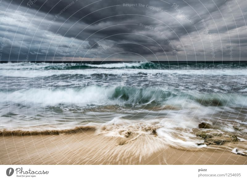 tempest Beach Ocean Waves Environment Nature Landscape Elements Water Sky Clouds Storm clouds Climate Bad weather Wind Gale Coast North Sea Baltic Sea