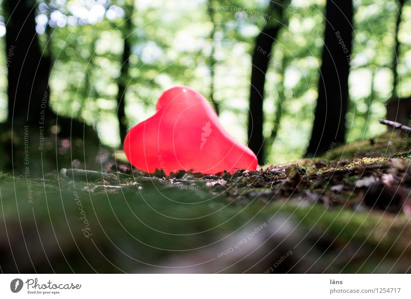pZ3 l somewhere Love Heart Pain Infatuation Forest Balloon Loneliness Individual Find