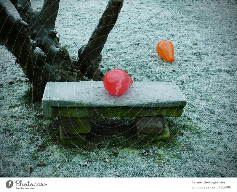 No room for both of us Balloon Multicoloured Gaudy Contrast Physics Cold Ice Winter Park Park bench Seating Meadow Stone bench Tree Fill Loneliness Grief Past