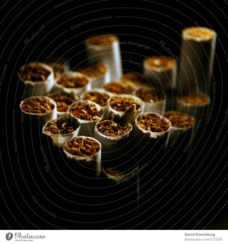 Black Yellow Dark Blaze Paper Search Round Smoking Smoke Rotate Intoxicant Cigarette Against Match Tar Feeble