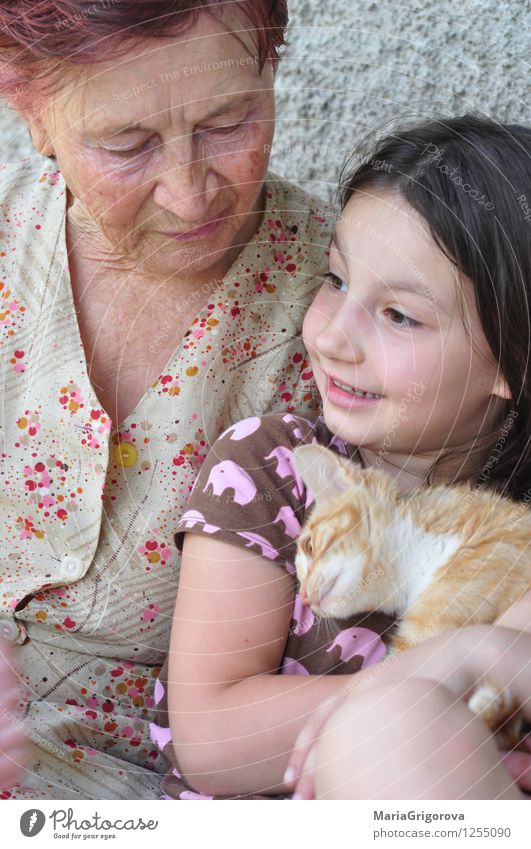Great grandmother, grandchild, kitten Cat Human being Woman Child Summer Joy Animal House (Residential Structure) Girl Adults Life Love Senior citizen