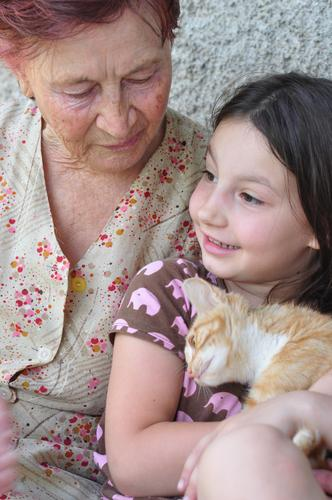 Great grandmother, grandchild, kitten Lifestyle Joy Summer House (Residential Structure) Human being Child Girl Woman Adults Grandparents Senior citizen