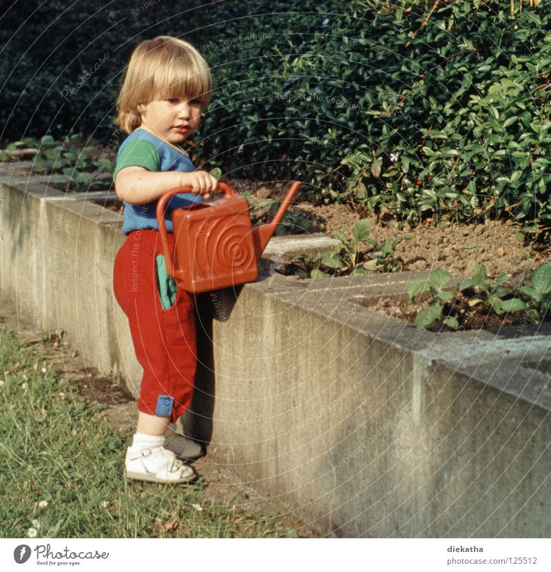 Human being Child Girl Flower Summer Work and employment Garden Wall (barrier) Blonde Cast Former Garden Bed (Horticulture) Slide Gardener Tub The eighties