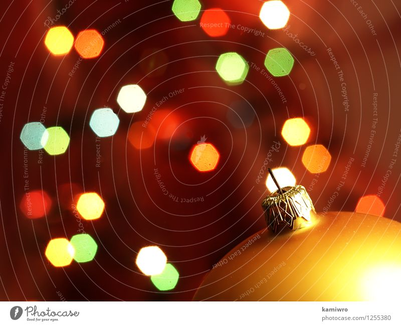 Blurred Christmas lights. Christmas & Advent Green Beautiful Colour Red Winter Happy Feasts & Celebrations Art Bright Glittering Design Decoration Photography