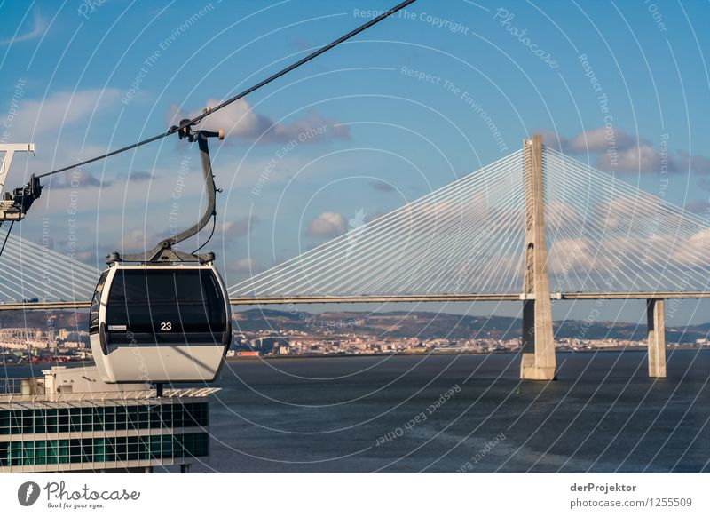 Gondola lift and Ponte Vasco da Gama Vacation & Travel Tourism Trip Adventure Far-off places Freedom Sightseeing City trip Summer vacation Environment