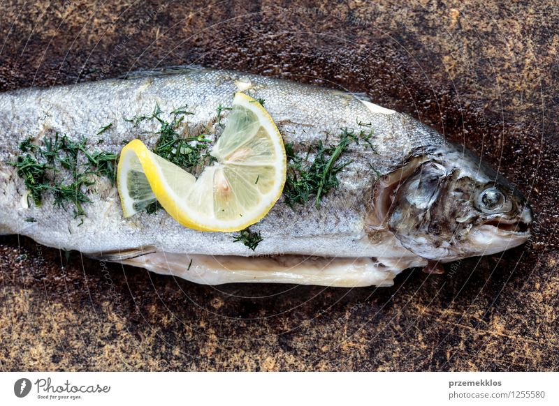 Trout dish on picnic away from home Fish Herbs and spices Lunch Dinner Healthy cooked Dish Lemon Meal prepared Slice Colour photo Exterior shot Deserted