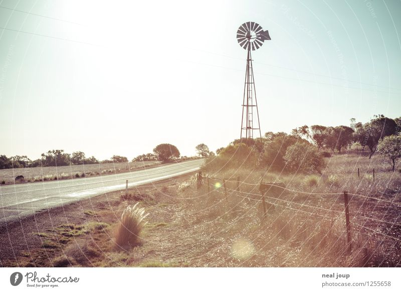 Australia as in the catalogue Far-off places Freedom Summer Pinwheel Water pump Environment Nature Landscape Cloudless sky Sunlight Field Steppe Grassland