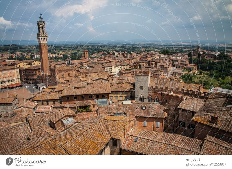 Clearly arranged Vacation & Travel Tourism Far-off places Sightseeing City trip Summer vacation Sky Clouds Horizon Siena Tuscany Italy Town Downtown Old town