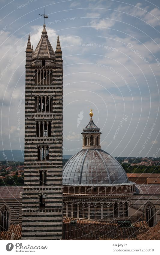 ...actually makes you fat Vacation & Travel Sightseeing City trip Summer Summer vacation Sky Siena Tuscany Italy Town Downtown Old town Church Dome Tower