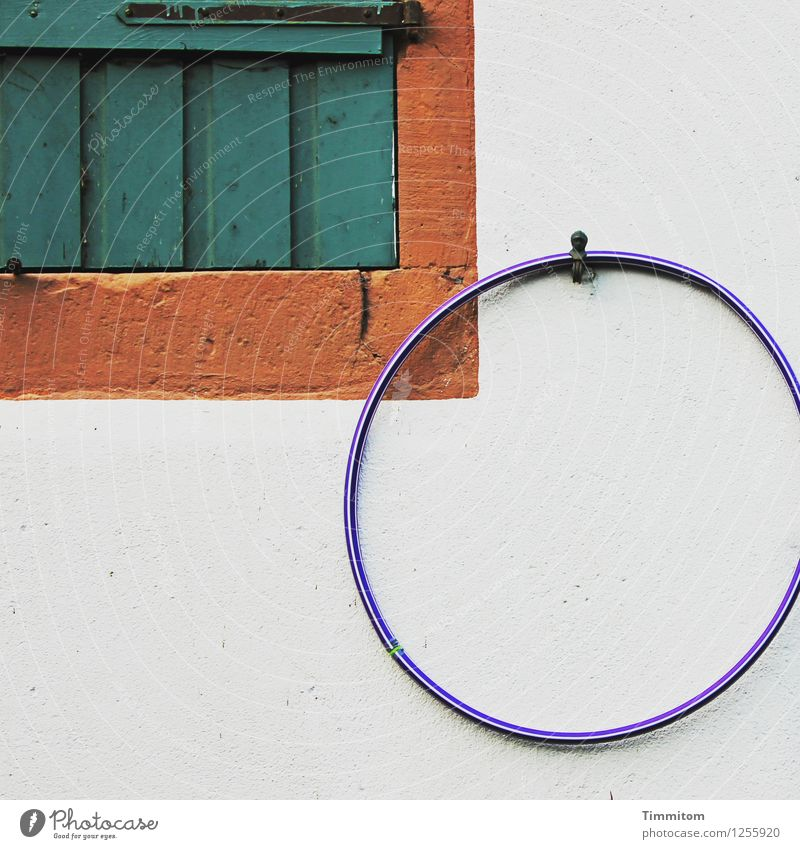 Play? Living or residing Wall (barrier) Wall (building) Window Hula hoop Wood Plastic Hang Esthetic Simple Blue Brown Green White Emotions Shutter Closed