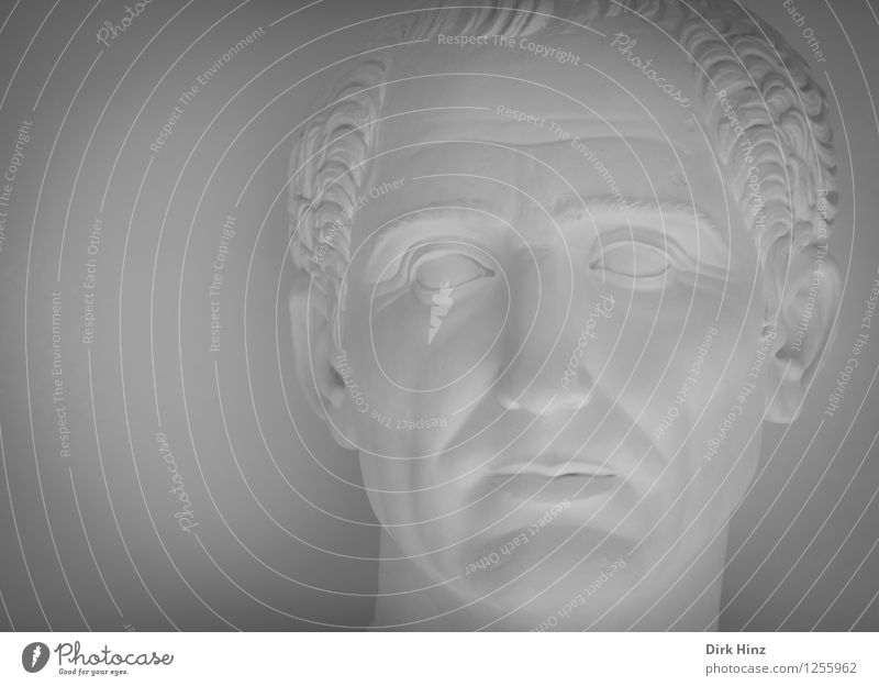 ruler Human being Masculine Man Adults Head 1 30 - 45 years 45 - 60 years Art Exhibition Museum Work of art Sculpture Old Historic Gray White Culture Caesar