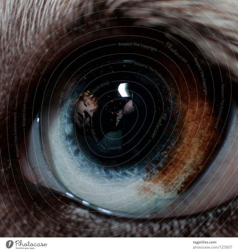THE INSIDE Reflection Instant messaging Mirror Clarity Mystic Australia Dog Animal Livestock breeding White Black Brown Dream Loyalty Cow markings Dog eyes