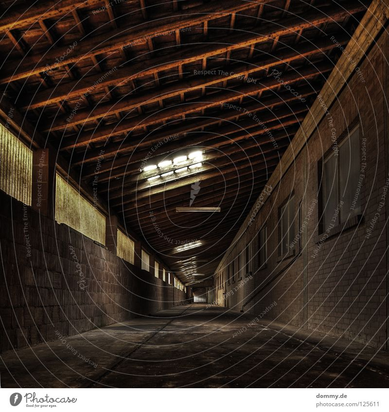 Endless Infinity Tunnel Hallway Sidewalk Work and employment Workplace Empty Dirty Window Yellowed Roof Light Planning Shut down Loneliness Brick Wall (barrier)