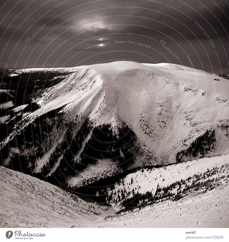 On the slopes Winter Snow Mountain Landscape Elements Sky Clouds Horizon Climate Beautiful weather Tree Forest Giant Mountains Peak Dark Gigantic Large Above