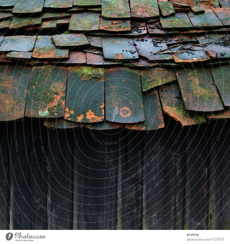Overbite with caries Brick Roof House (Residential Structure) Wood Decline Chaos Broken Derelict Ruin Collapse Dangerous Roofing tile Hollow Perforated Damp