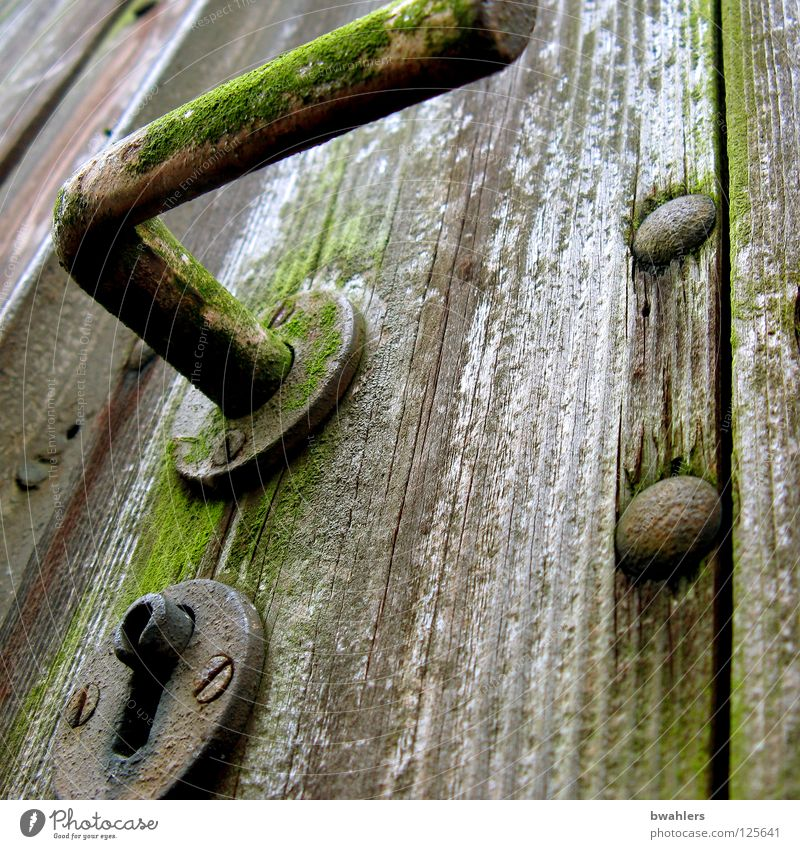 mysterious Wood Door handle Nail Rust Unlock Gray Derelict Garden Park garden door Gate Old Castle
