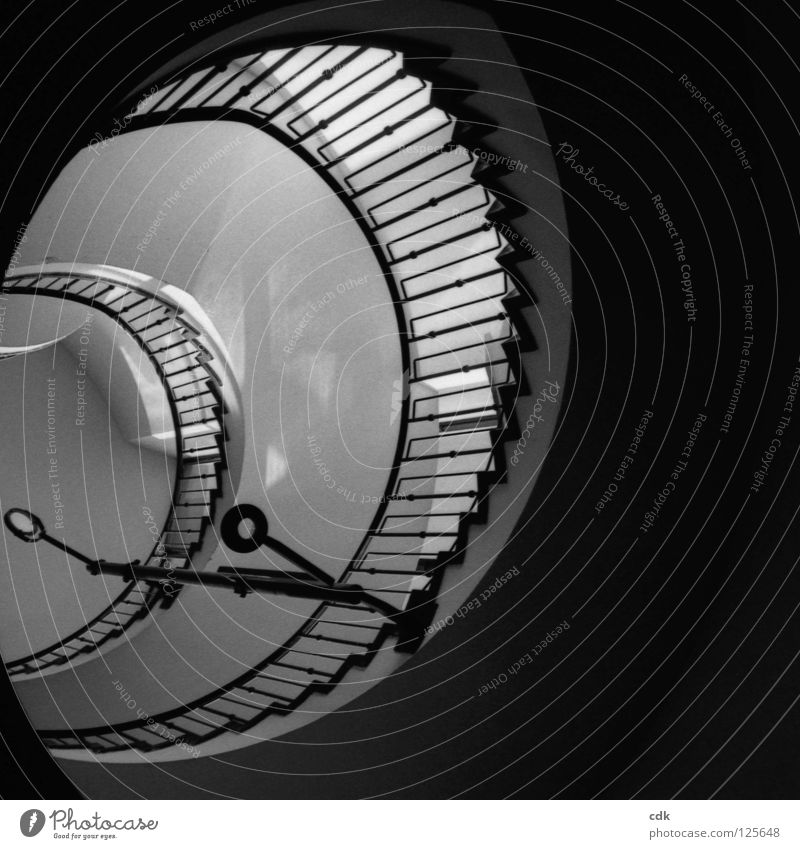 Interior views I Staircase (Hallway) Banister Stairs Building House (Residential Structure) Wall (building) Iron Concrete White Black Pattern Round Swing Curved