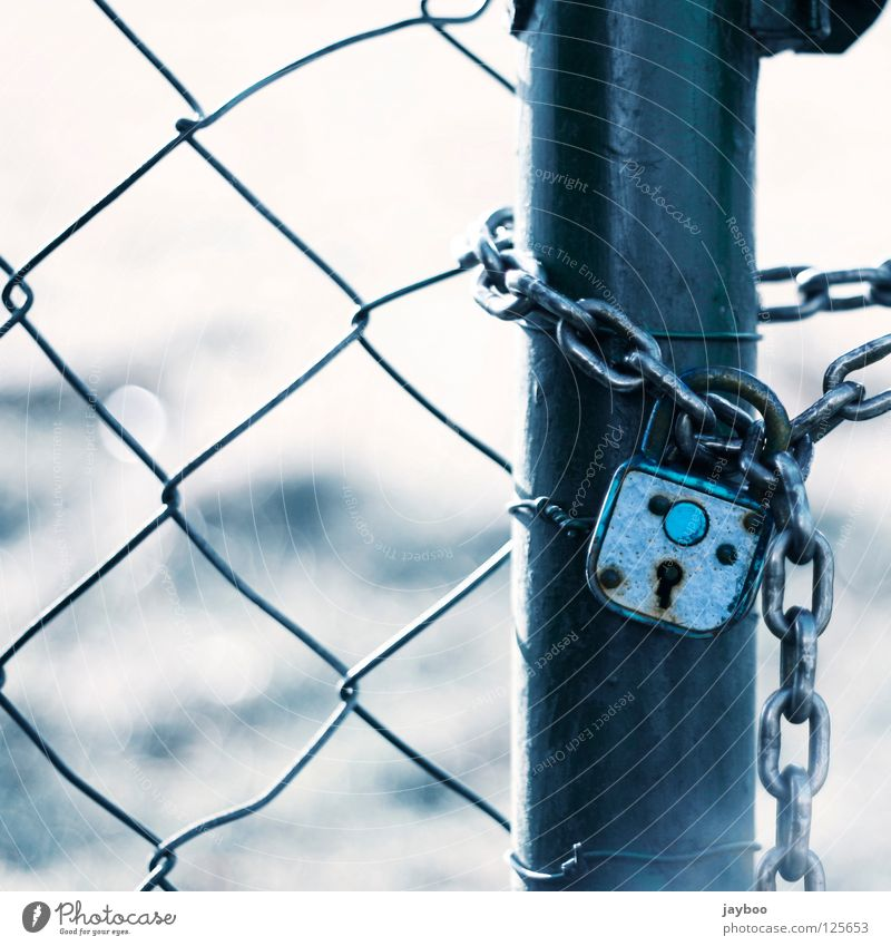 no way out Wire netting fence Fence Padlock Meadow White Closed Key Passage Captured Detail Blue Chain no escape Exterior shot