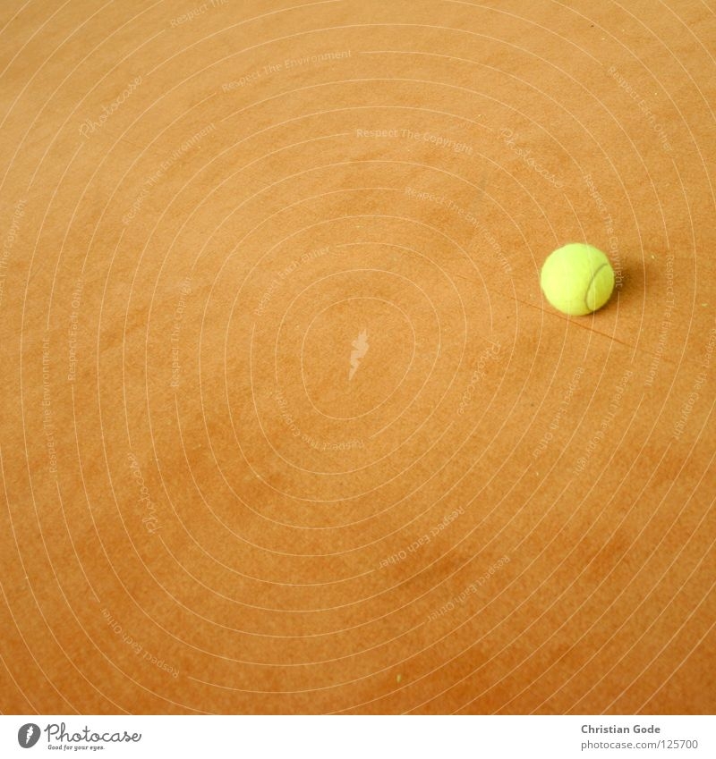 In the wide hallway Tennis Carpet Winter Reserved Tennis ball Green White Speed Playing Tennis rack 2 Service Empty Sports Leisure and hobbies Ball sports