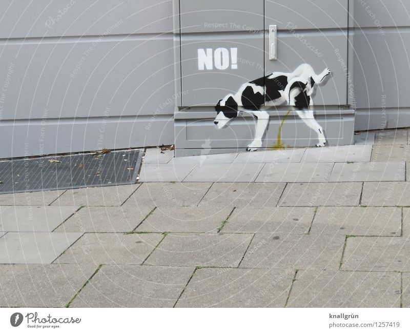 Dog City White Joy Animal House (Residential Structure) Black Environment Wall (building) Graffiti Emotions Natural Funny Wall (barrier) Gray Stand