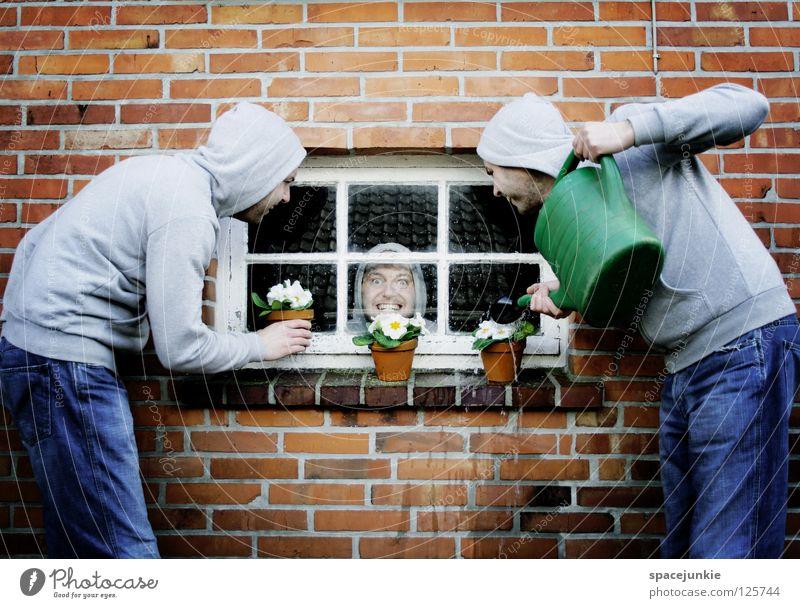 Man Water Flower Joy Window Wall (building) Spring Garden Stone Wall (barrier) Work and employment Glass Closed Crazy Kitsch Village