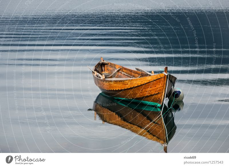 Boat on the Storfjord Relaxation Vacation & Travel Water Fjord Watercraft Old Idyll Norway North Dal Møre og Romsdal destination voyage wooden boat Colour photo