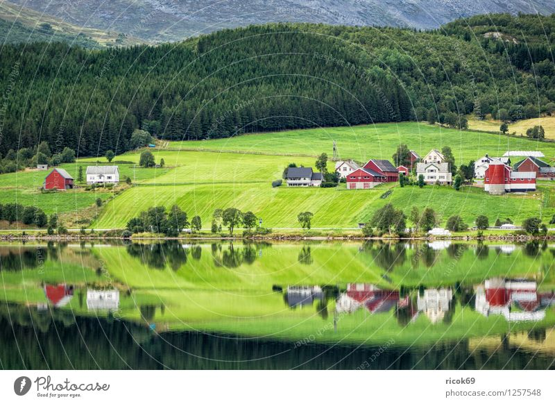 Mountain lake in Norway Relaxation Vacation & Travel House (Residential Structure) Nature Landscape Water Lake Hut Building Idyll Møre og Romsdal destination