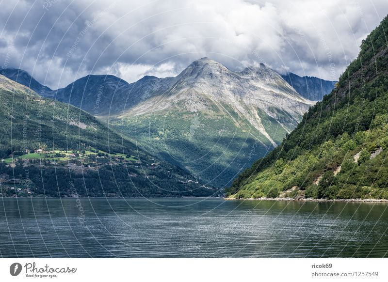 Storfjord in Norway Relaxation Vacation & Travel Mountain Nature Landscape Water Clouds Fjord Ocean Idyll Tourism North Dal Møre og Romsdal destination Sky