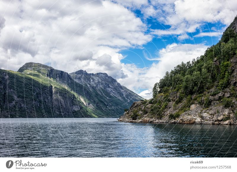 Nature Vacation & Travel Water Relaxation Landscape Clouds Mountain Tourism Idyll Scandinavia Norway Fjord Geirangerfjord Møre og Romsdal