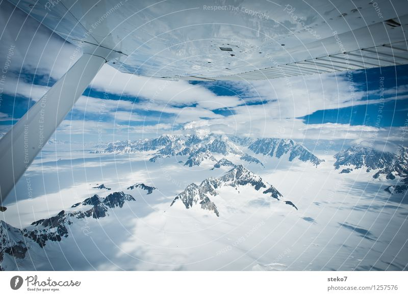Glacier Land IV Mountain Mount Logan Snowcapped peak In the plane Flying Gigantic Large Cold Blue White Loneliness Hope Far-off places Yukon Territory