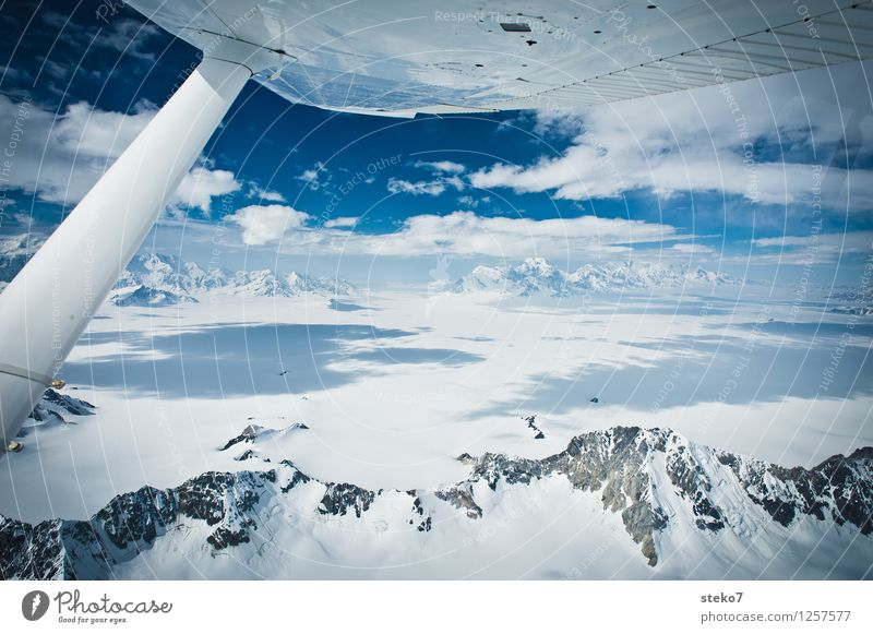 Glacier Land III Ice Frost Mountain In the plane Flying Gigantic Infinity Cold Blue White Loneliness Horizon Pure Far-off places Yukon Icefield