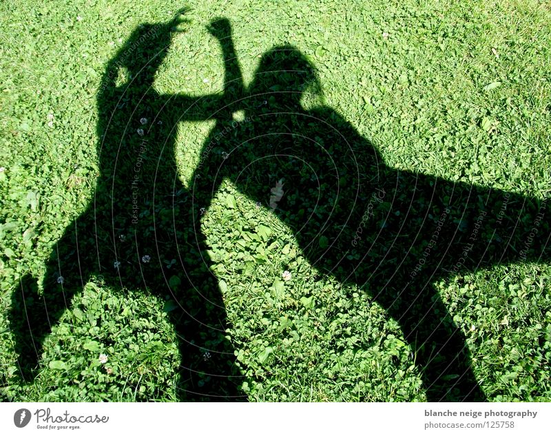 the shadow proves the sunshine Summer Meadow 2 Green Black Attack Fight Sun green meadow Shadow two people two persons two shadows Contrast pot Joy