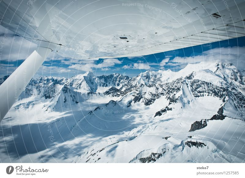 Blue White Loneliness Far-off places Cold Mountain Flying Glittering Ice Peak Snowcapped peak Gigantic Untouched Yukon