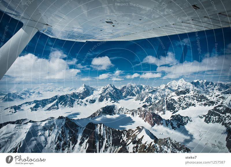 Glacier Land IX Mountain Snowcapped peak Flying Far-off places Free Infinity Cold Blue White Loneliness Alaska Wing Aerial photograph