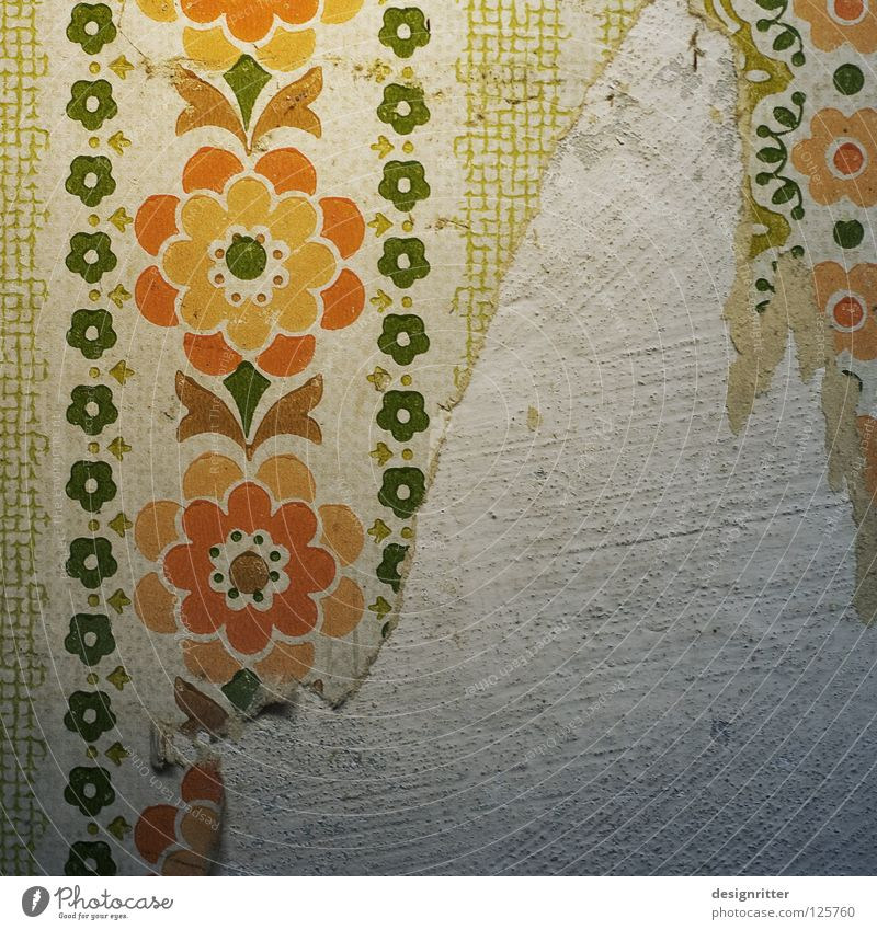 change of scenery Wall (building) Wallpaper Self-made Craft (trade) Value Precious Cheap Flower Flowery pattern Offspring Stale Past Time Era Old fashioned