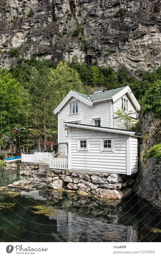 A house in Geiranger Relaxation Vacation & Travel Mountain House (Residential Structure) Nature Landscape Water Tree Forest Hut Building Architecture Idyll