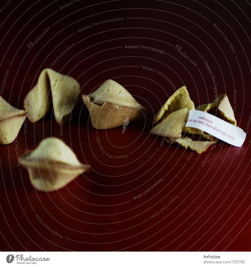 export hit Fortune cookie Baked goods Crisp Figure of speech Future Parlor games Wisdom China Chinese Tradition Red Food Paper Sweet Surprise Undo Open