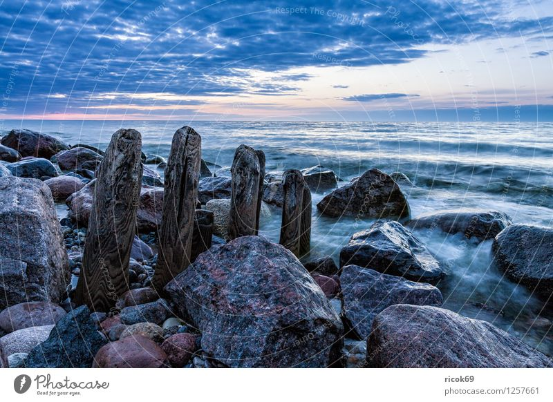 Stage at the Baltic Sea Relaxation Vacation & Travel Beach Ocean Landscape Water Rock Coast Stone Blue Break water Mecklenburg-Western Pomerania Heiligendamm