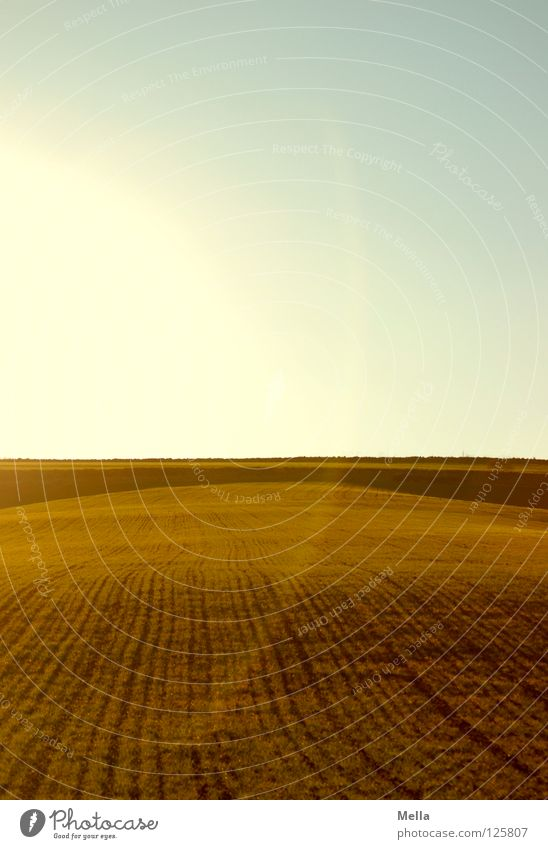 straight ahead Field Furrow Sowing Right ahead String Horizon Agriculture Ecological Lighting Round Semicircle Back-light Radiation Green Air Sky Tracks Line