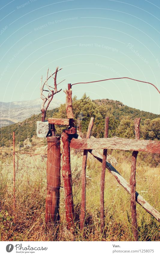 Up to here and no further Nature Landscape Cloudless sky Summer Grass Bushes Meadow Hill Mountain Sardinia Gate Fence Wood Beautiful Warmth Closed Colour photo