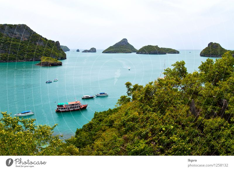 boat coastline of a green lagoon a Vacation & Travel Tourism Trip Freedom Summer Beach Island Nature Plant Sand Beautiful weather Tree Flower Leaf Hill Rock