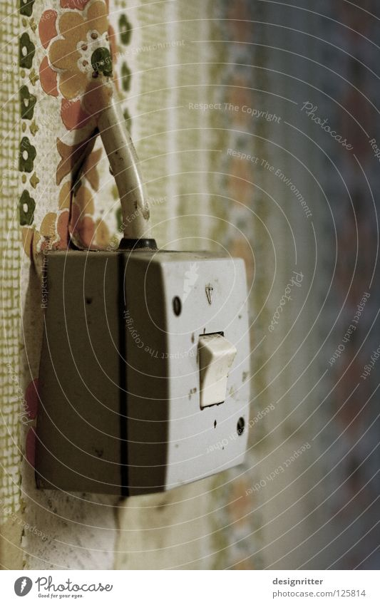 Old Flower Wall (building) Time Lamp Living or residing Energy industry Modern Electricity Broken Simple Cable Past Hide Craft (trade) Wallpaper