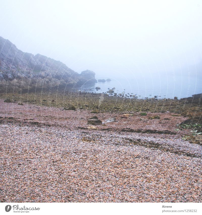 Blue Ocean Red Loneliness Landscape Calm Beach Cold Moody Fog Meditative Gloomy Soft Grief Longing Bay