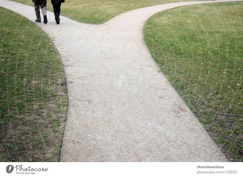 Human being Green Love Meadow Garden Lanes & trails Sand Air Think Park Couple Together Going Walking In pairs Lawn